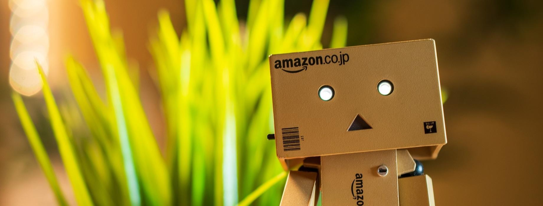 Amazon service recycling à découvrir